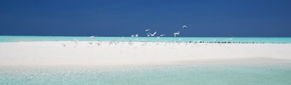 Maldives White Sand